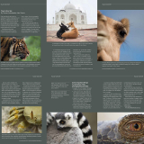 Photo review Aust Travel photography book